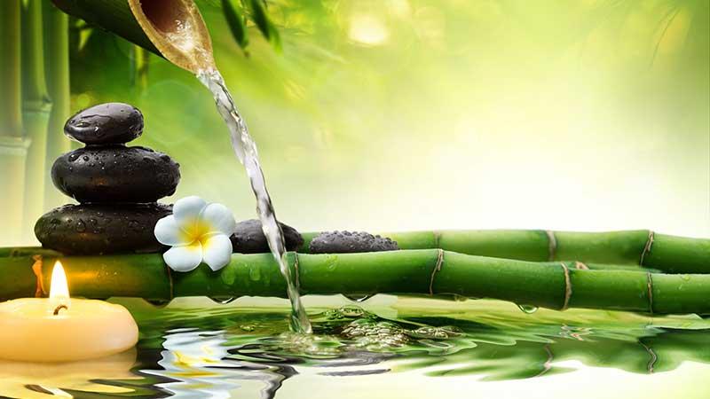Bamboe als anti-aging. Bamboe in de keuken en als voedingssupplement