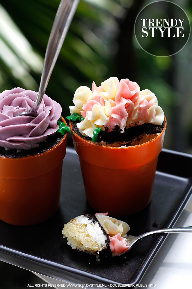 flower-pot-cake-06