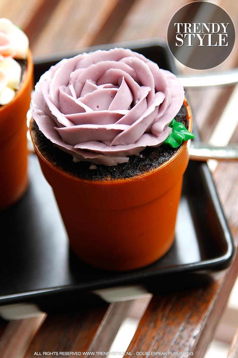 flower-pot-cake-07