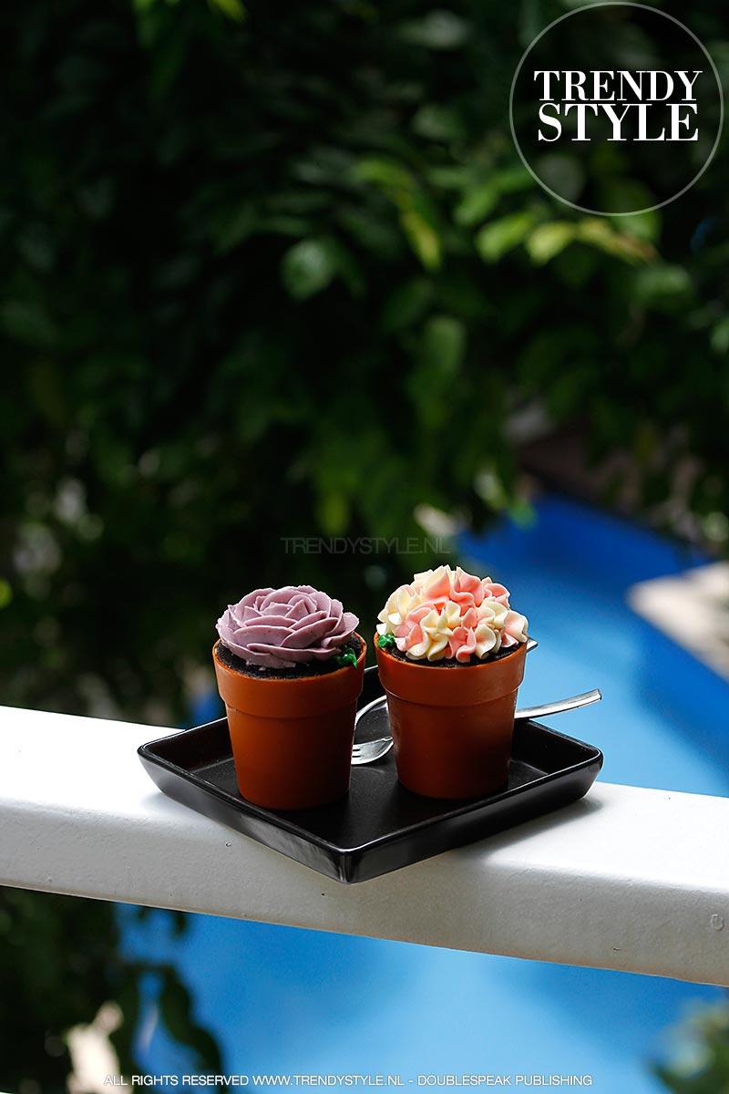 flower-pot-cake-08