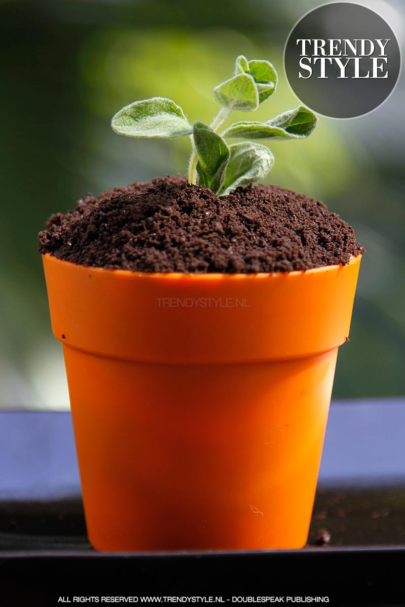 flower-pot-cake-banoffee-02
