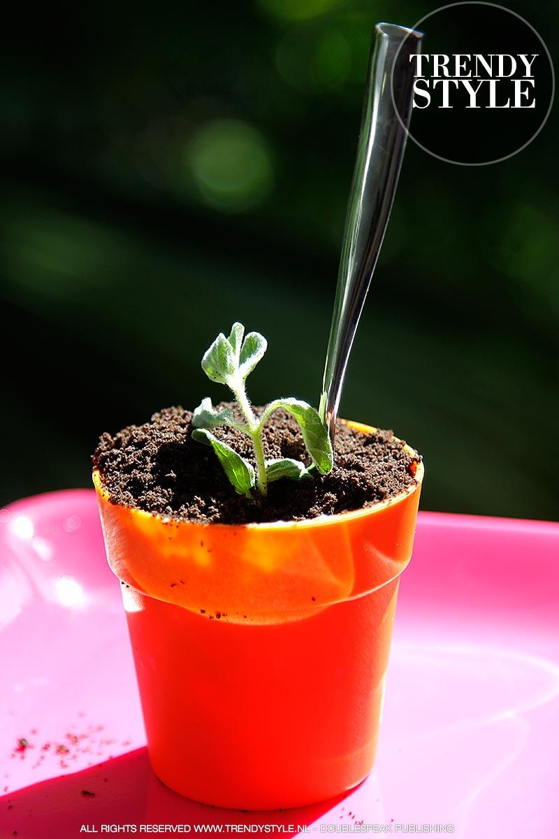 flower-pot-cake-banoffee-08