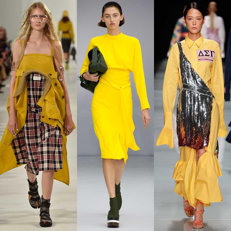 De modekleur geel. In deze tijd van het jaar kunnen we er ...
