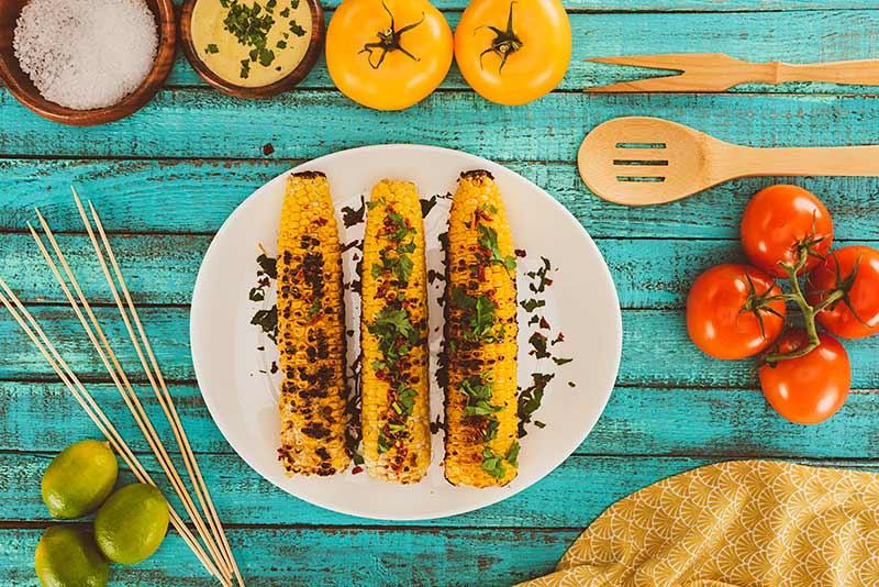 Afvallen. Kleuren die je eetlust stimuleren (en afremmen)