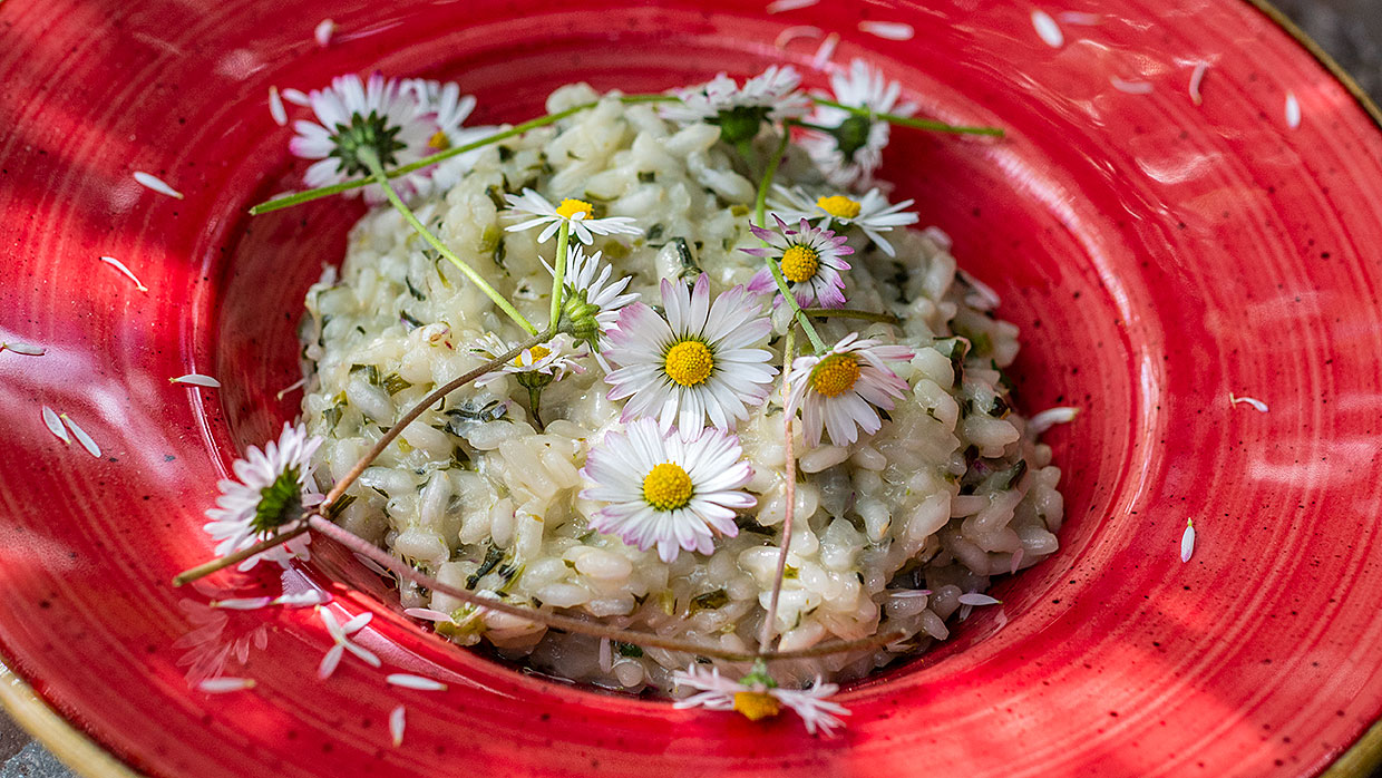 Risotto met madeliefjes. Foto: Charlotte Mesman