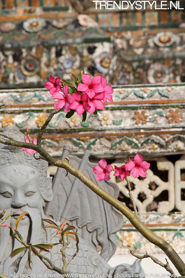 wat-arun-bangkok01