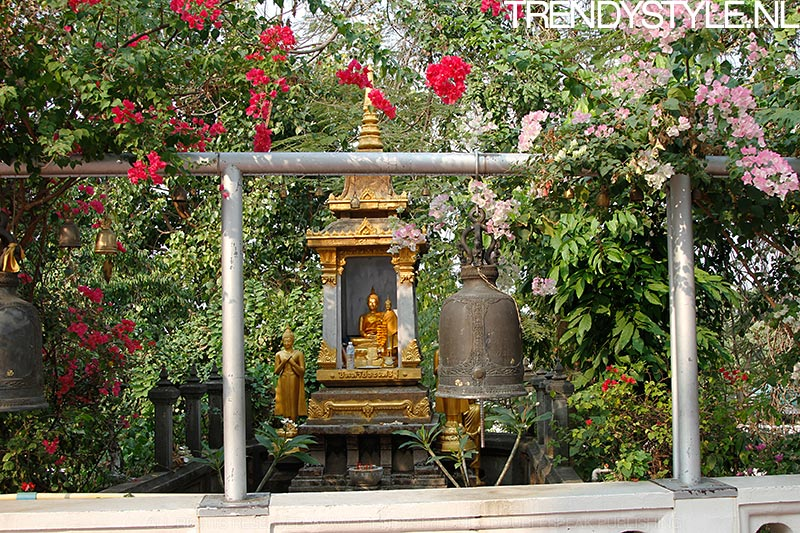 wat-saket-bangkok-07